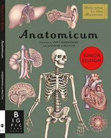 Anatomicum Junior by Jennifer Z Paxton