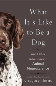 What It's Like to Be a Dog : And Other Adventures in Animal Neuroscience by Gregory Berns