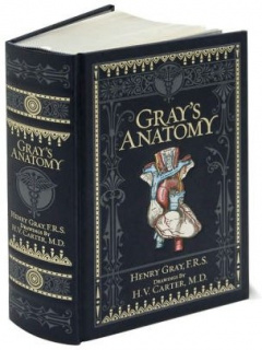 Gray's Anatomy (Barnes & Noble Omnibus Leatherbound Classics) by Henry Gray