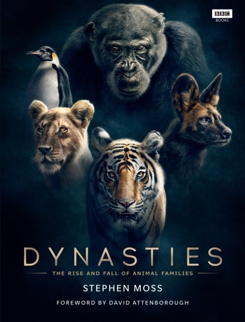 Dynasties : The Rise and Fall of Animal Families by Stephen Moss
