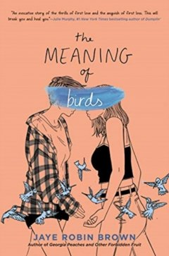 The Meaning of Birds by Jaye Robin Brown